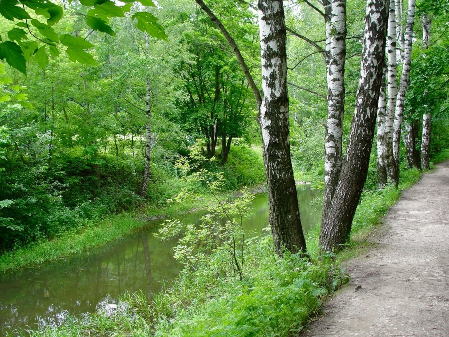Прогулка в Кусково 071 (2).jpg