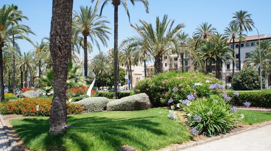 022_Palma_de_Majorca