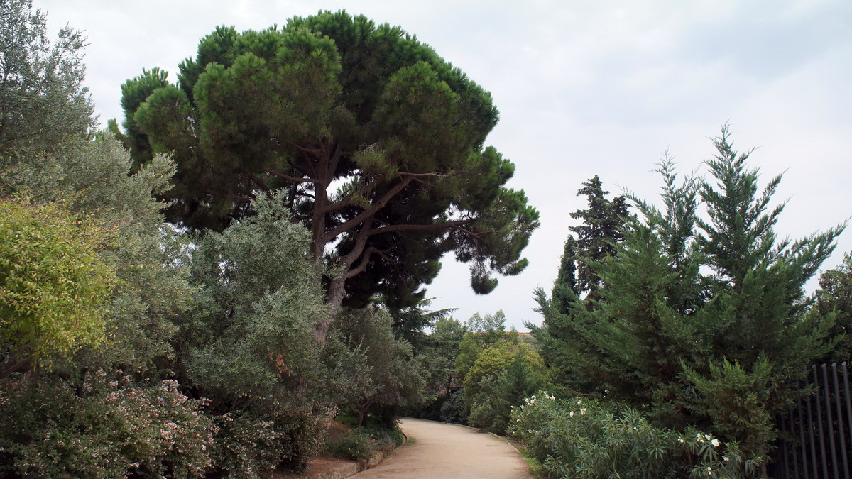035_Park_Guell