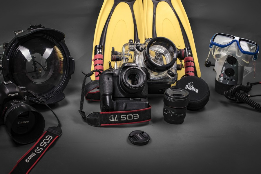 Canon 7D and underwater housing