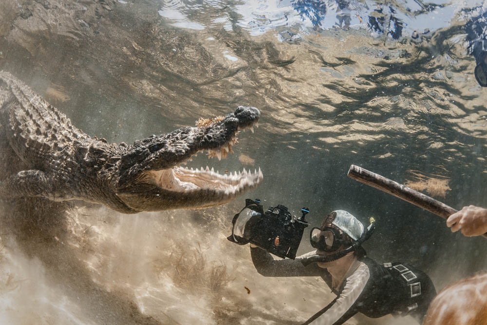 Фотограф против крокодила
