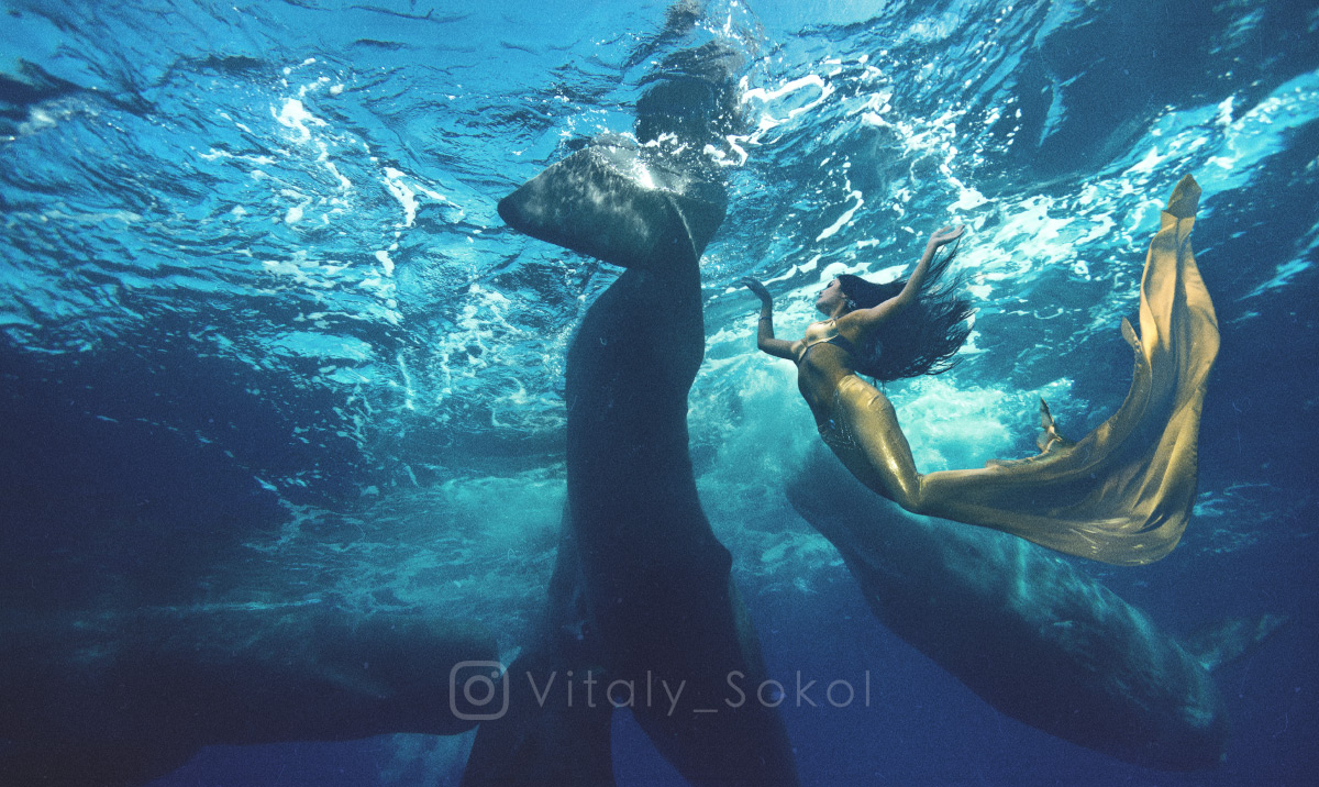 Девушка с китами под водой