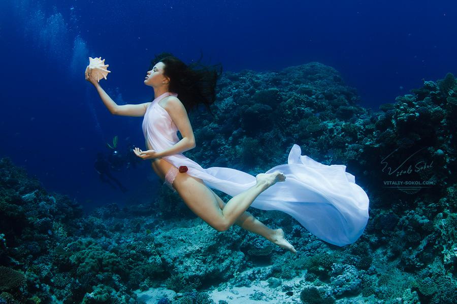 Съемка красивых моделей под водой. Гламурный дайвинг, русалки, сирены и сказочные существа.