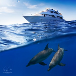 Two-bottlenose-dolphins-swimming-under-boat