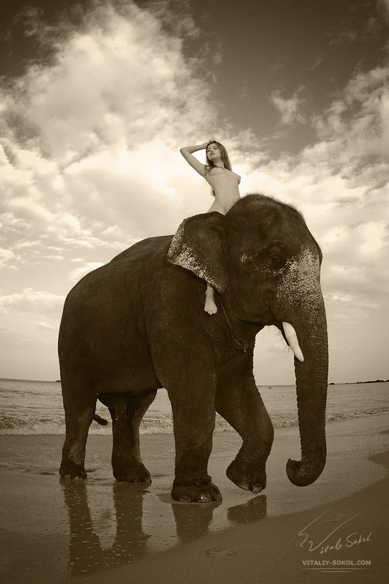 Elephant and girl. Beauty art nude