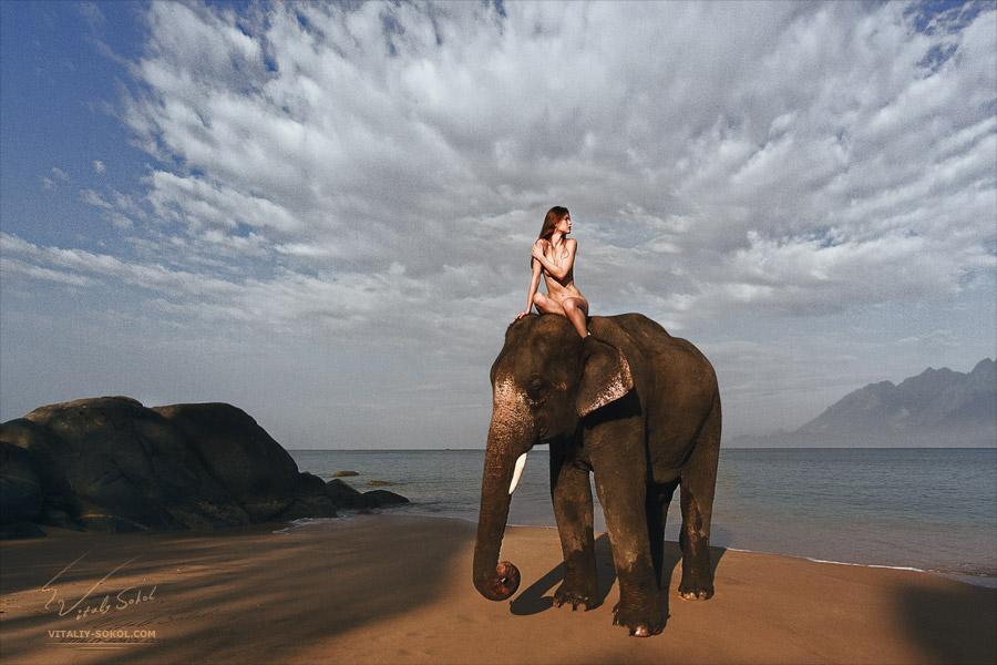 Sunrise beach. Beautiful naked model riding on elephant