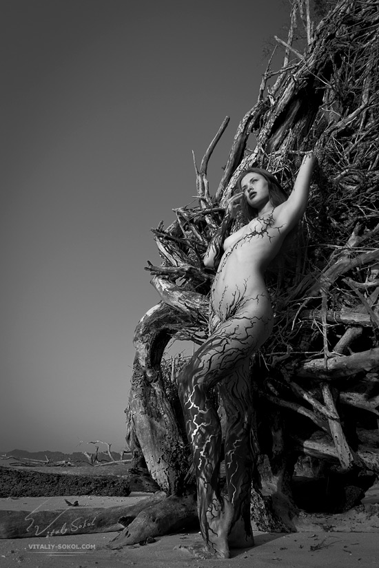 Wild art nude by Vitaliy Sokol