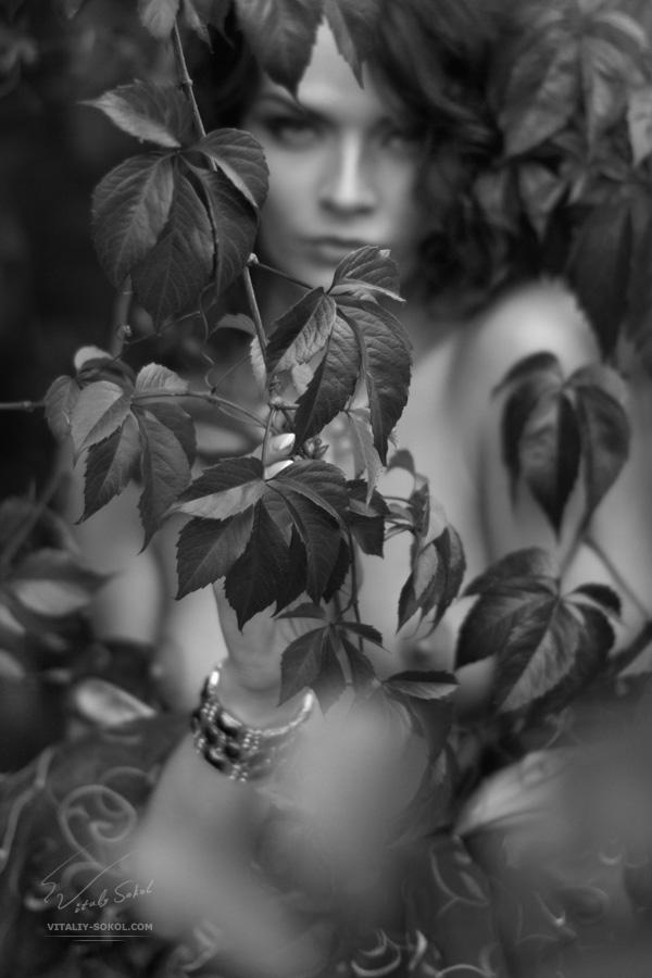 Portrait by Vitaliy Sokol