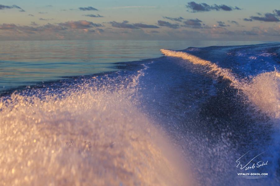 Мальдивы, утренний рейс, струя кильватера на рассвете
