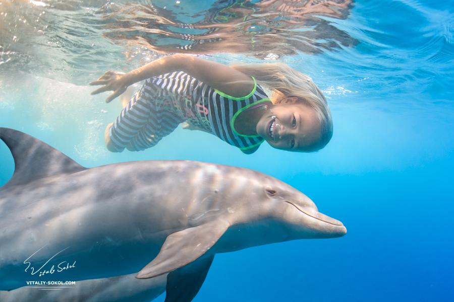 Семилетняя девочка ныряет с дельфинами
