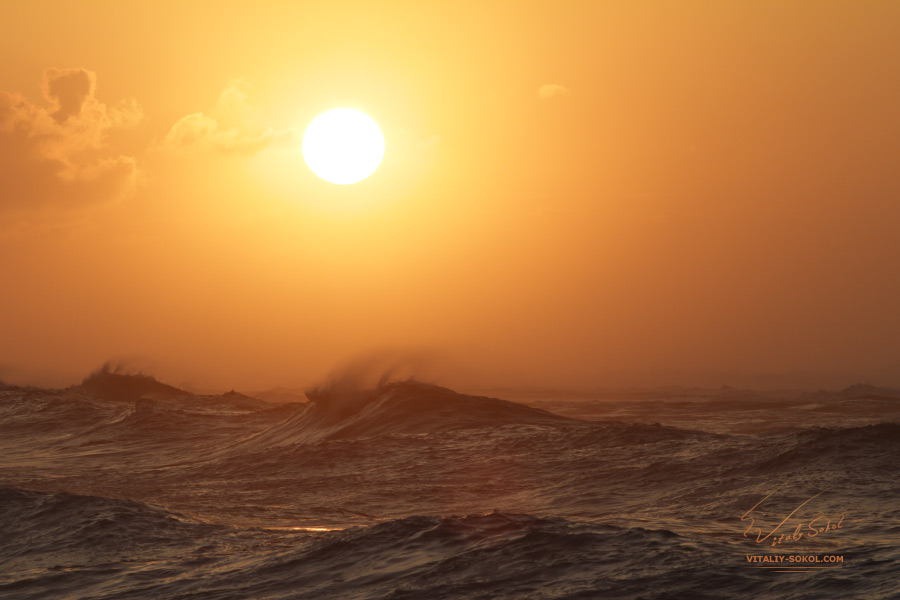 Sunset Ocean Waves in Hawaii