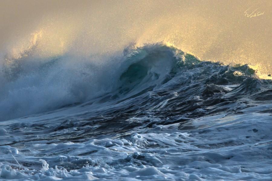 Закатный прибой, золотая пена на вершине океанской волны