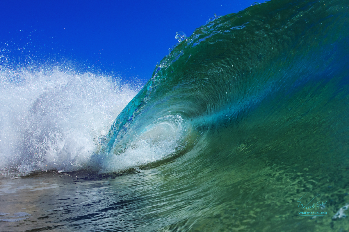 Beautiful Shorebreak Wave. Hawaiian surfing and watersport. Maui island in pictures. Ocean life and water surface