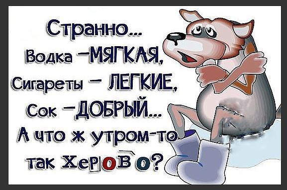 image (28).jpg