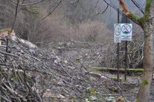 Циничное объявление на вырубленном склоне