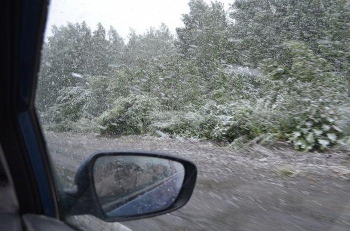 snow_100
