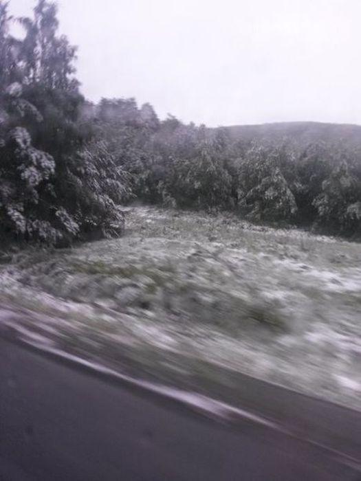 snow_130