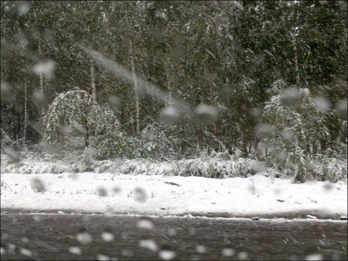 snow_150