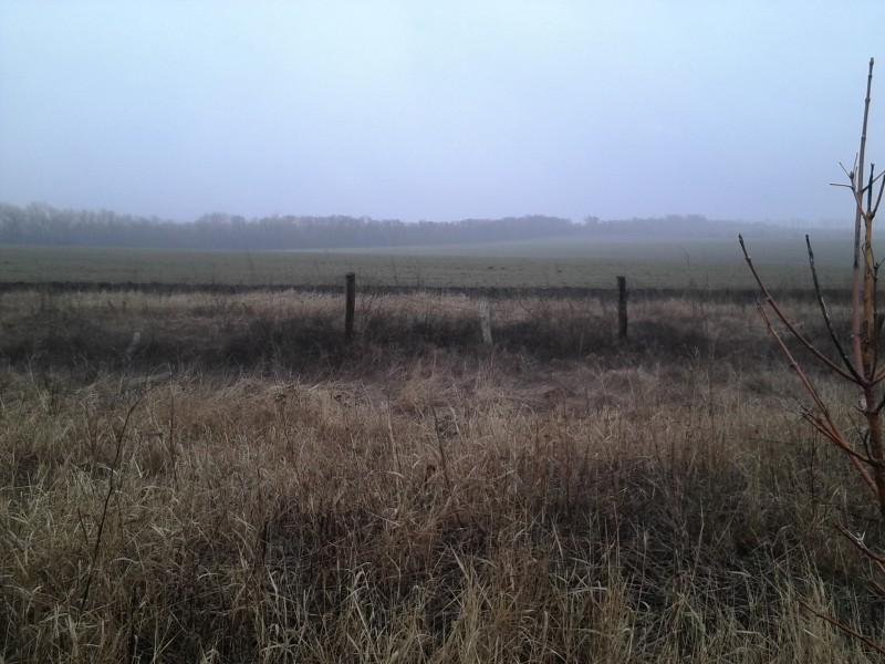 кордон_дріт_туман.jpg