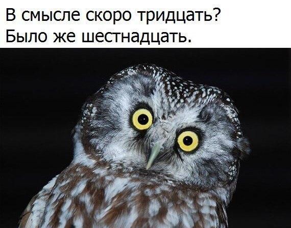 -ZV5x5me0jU