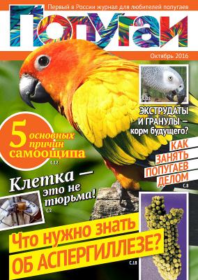 первый в России журнал для любителей попугаев