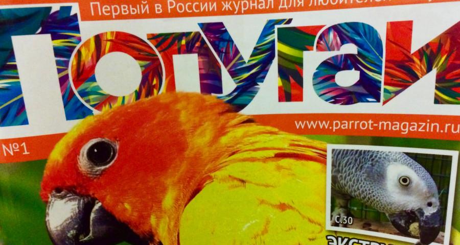 журнал для любителей попугаев