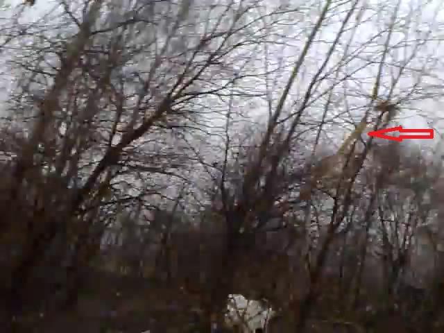 А это стропы крана на знаменитом видео.На них почему-то мало кто обращает внимание. http...