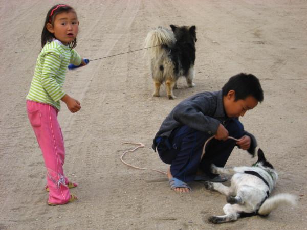 Хужурские дети и собаки