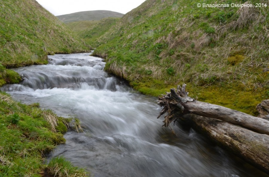 Тундровая речка