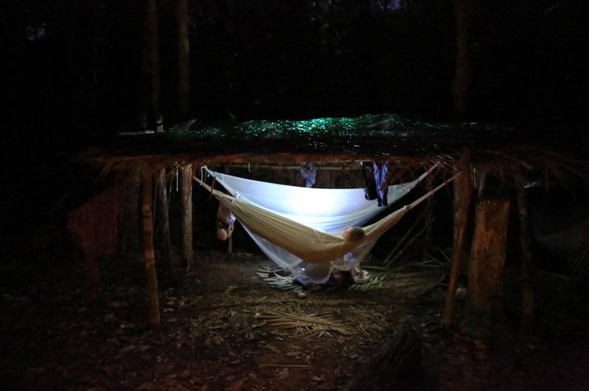 ночь в гамаках в джунглях