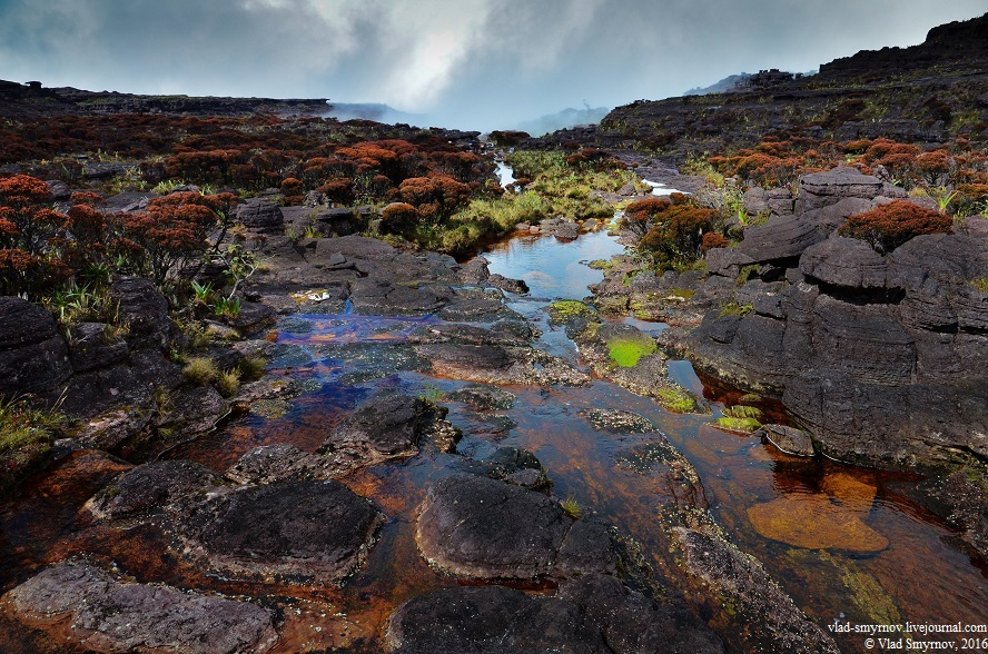 река с разноцветным дном