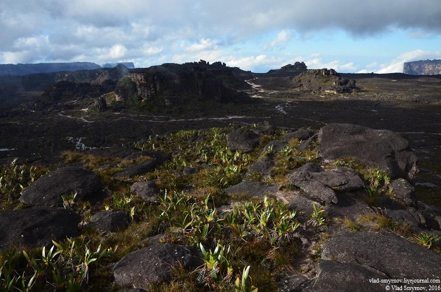 вид на южную часть плато с точки Маверик