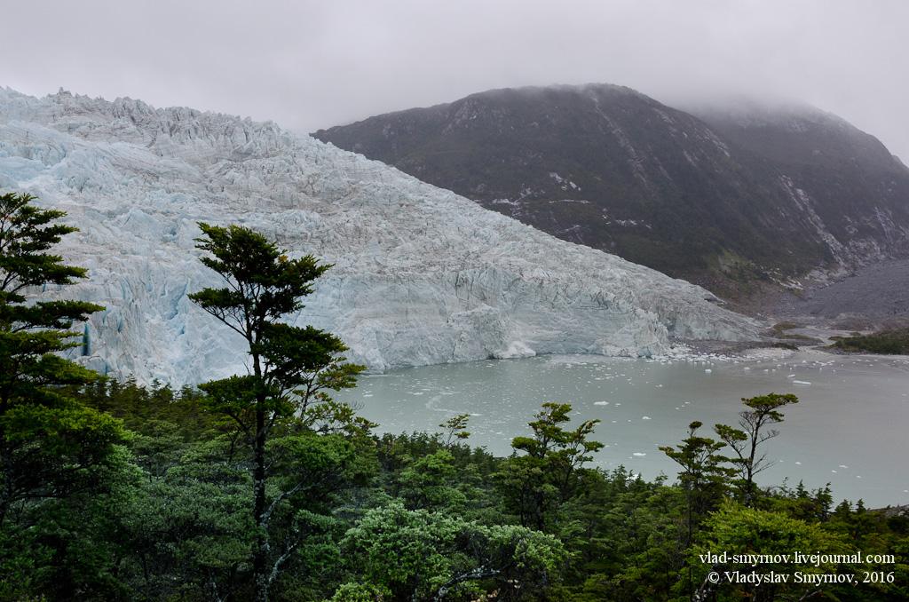 Ледник Пиа
