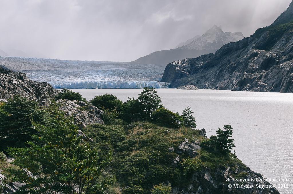 Ледник Грей