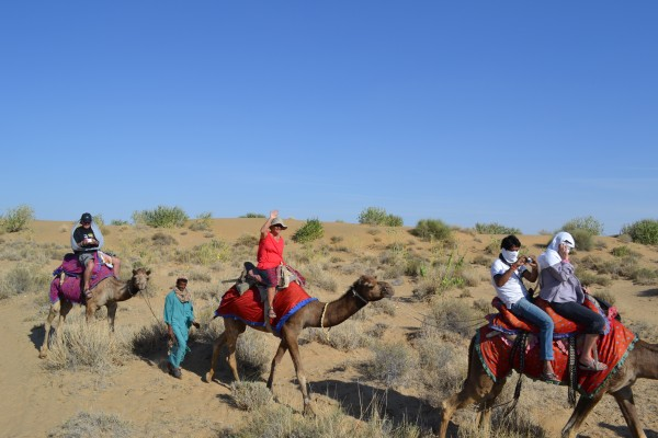 Туристическое сафари на верблюдах