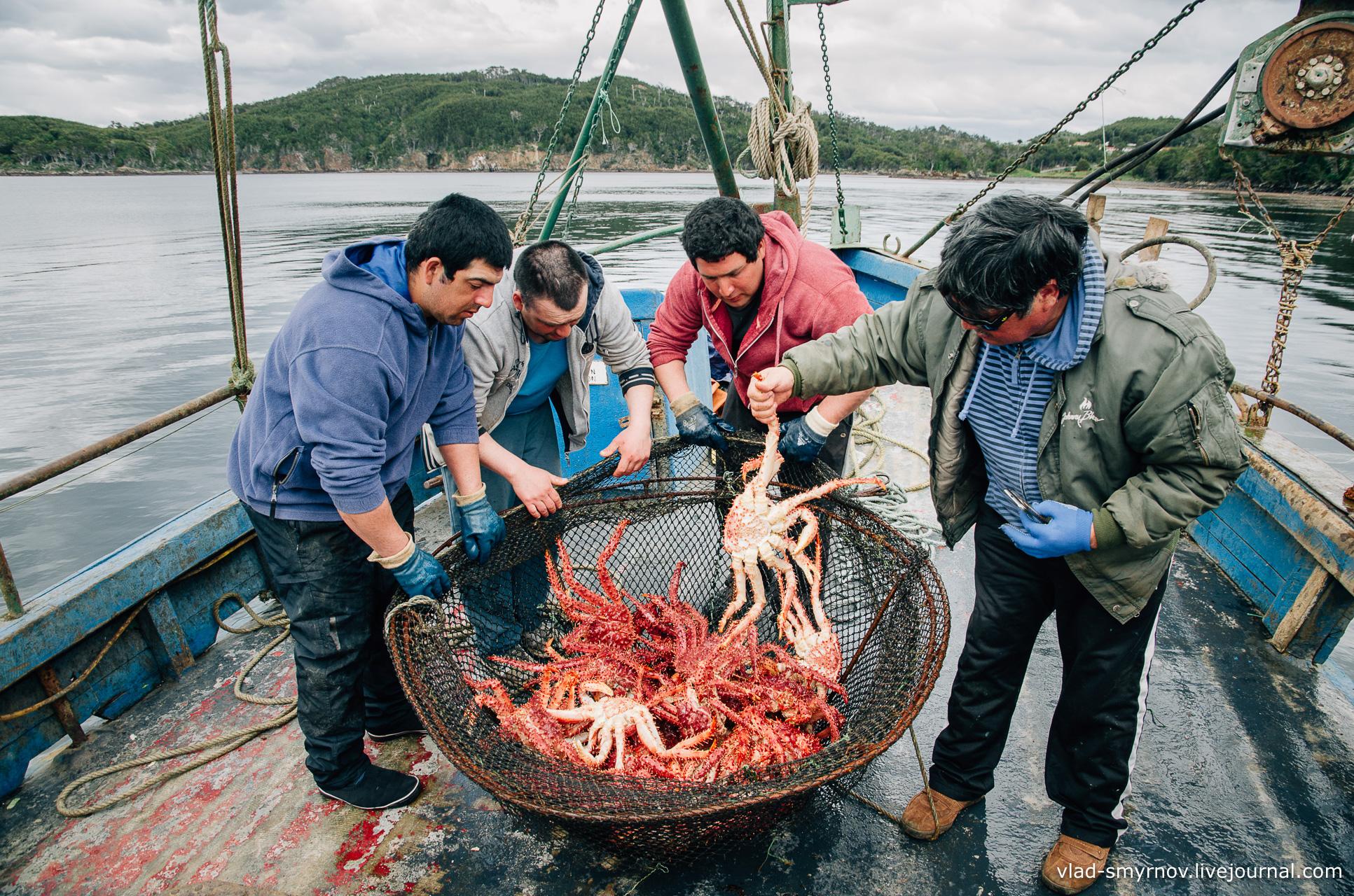 рыбалка на камчатке краб