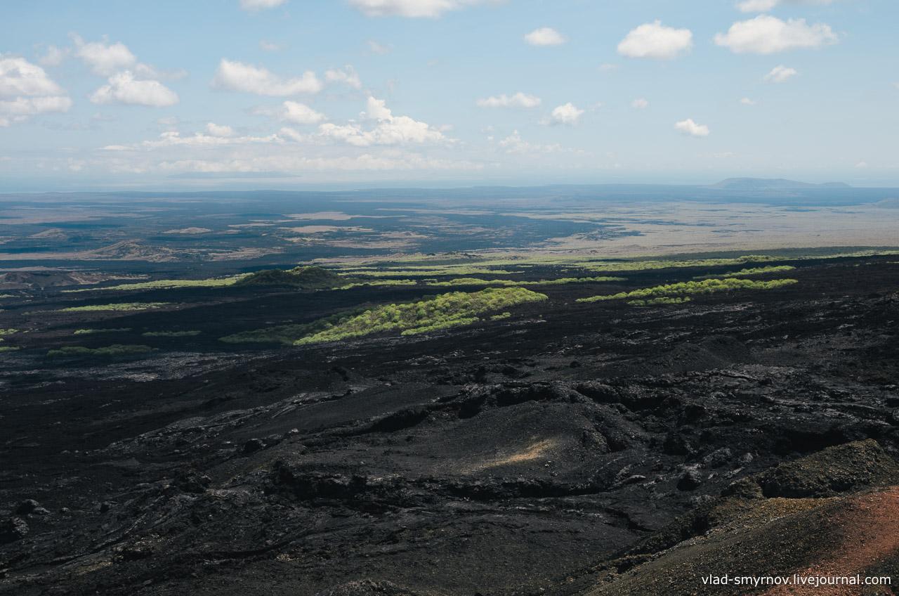 Так лава во время извержения выжигала леса на склонах вулкана