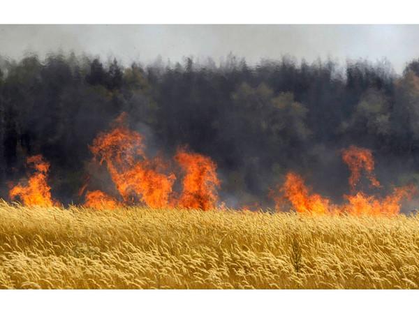 пожары на селе