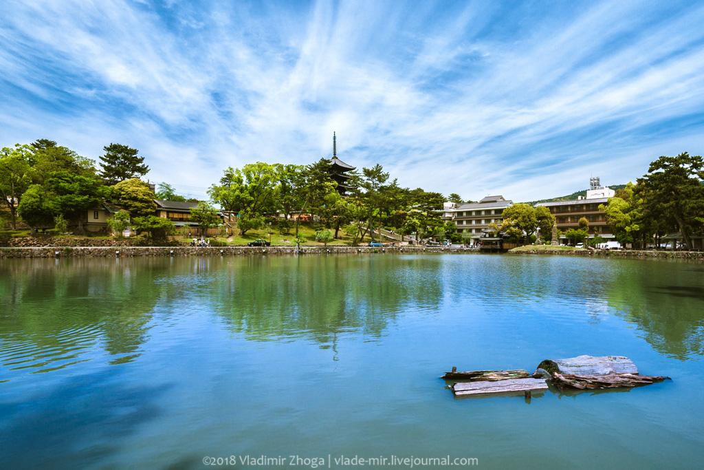 Один день в Наре (Япония)