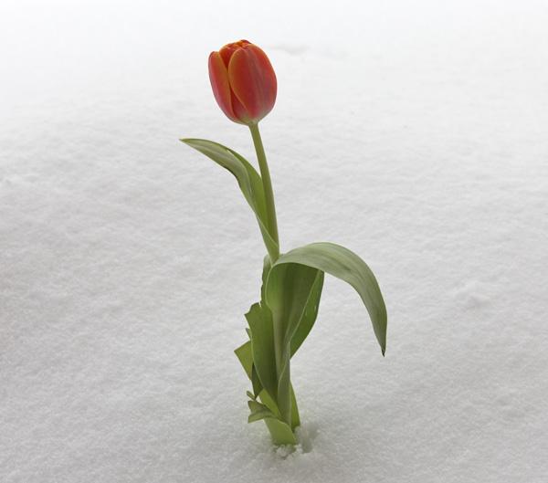 2014-04-04-02
