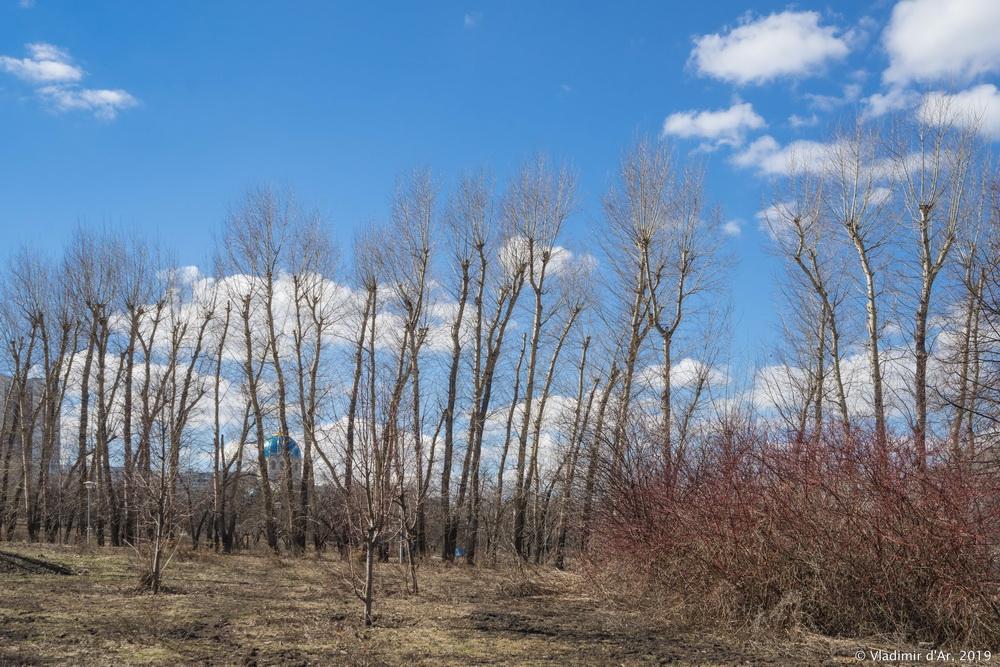 Весна - 004.jpg