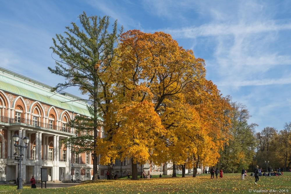 Царицыно - золотая осень