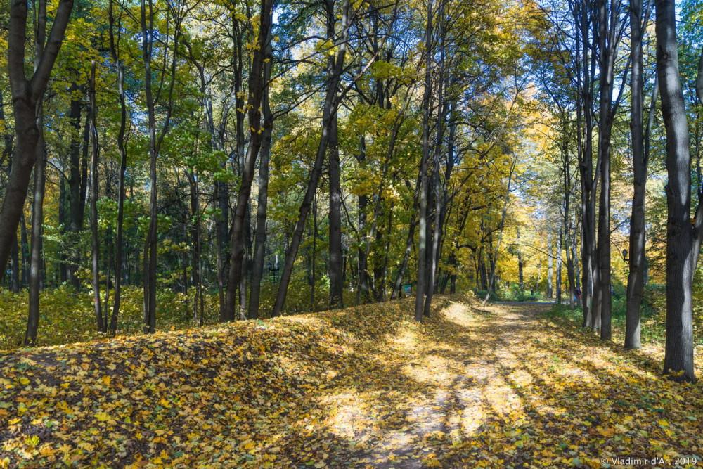 Царицыно - золотая осень 2019 - 002.jpg