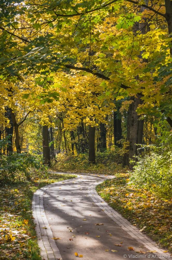 Царицыно - золотая осень 2019 - 018.jpg