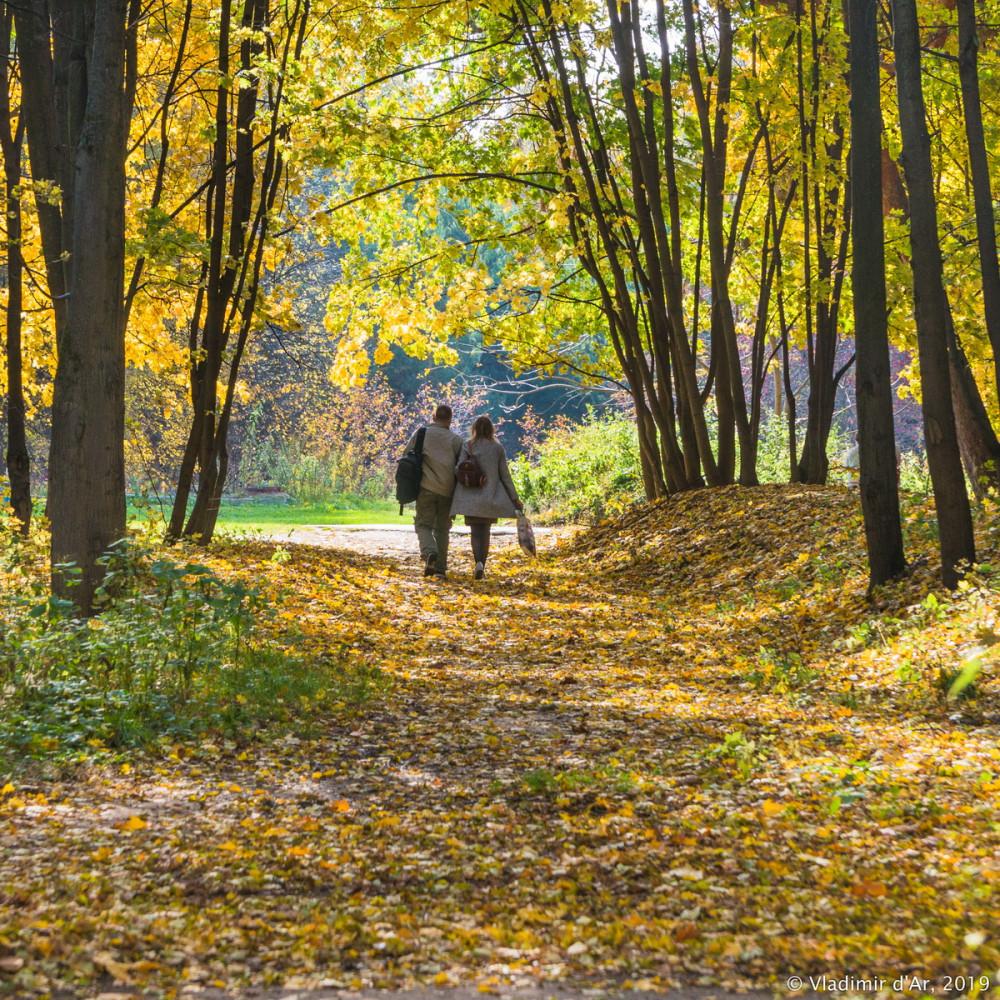 Царицыно - золотая осень 2019 - 024.jpg