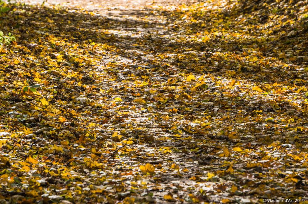 Царицыно - золотая осень 2019 - 025.jpg