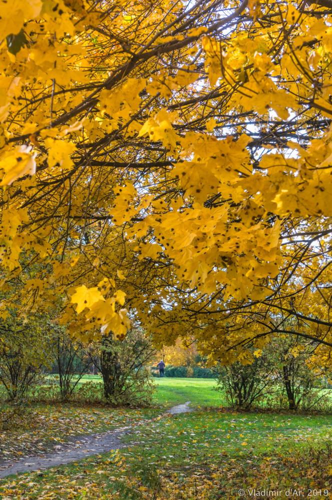 Царицыно - золотая осень 2019 - 028.jpg