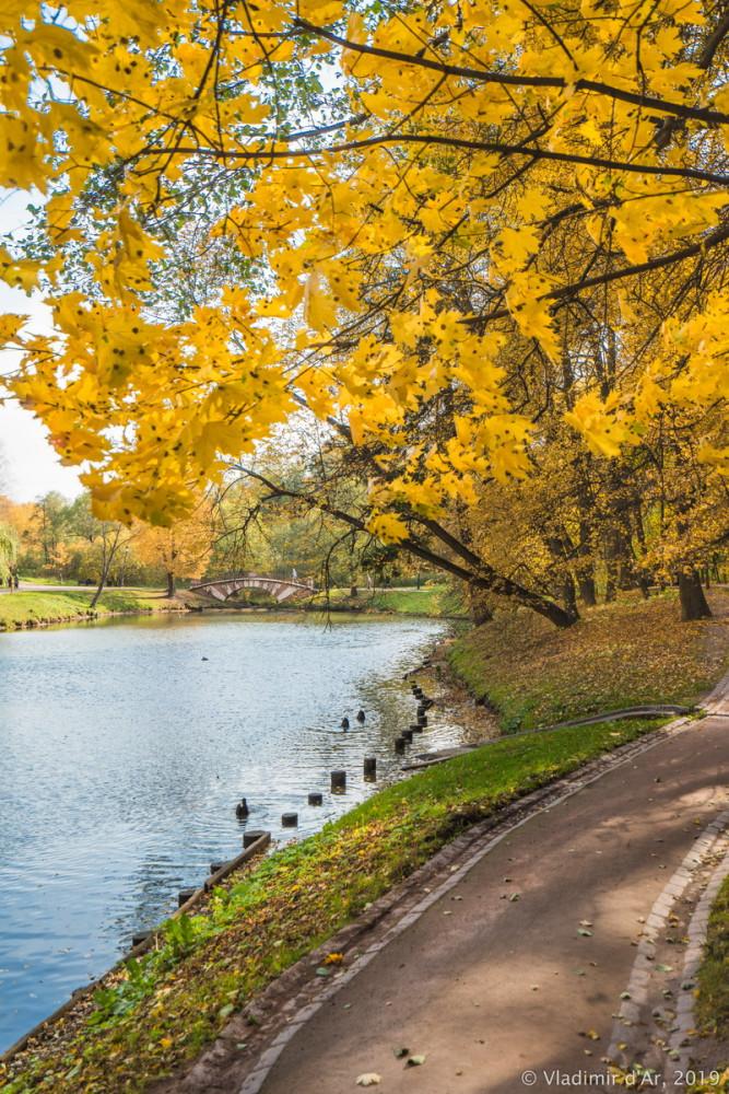 Царицыно - золотая осень 2019 - 047.jpg