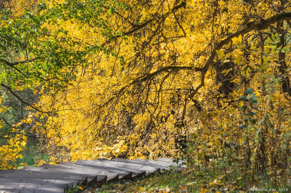 Царицыно - золотая осень 2019 - 048.jpg