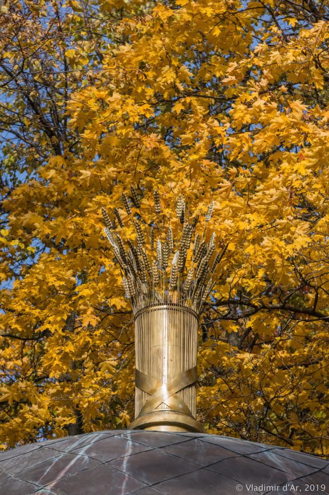 Царицыно - золотая осень 2019 - 050.jpg